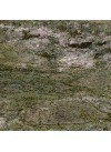Vert Réal Impérial - Finition Granit Polie