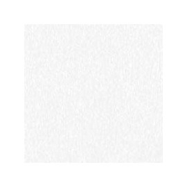 Blanc Thassos - Finition Marbre Polie
